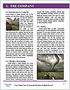 0000080298 Word Template - Page 3