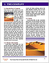 0000080301 Word Template - Page 3