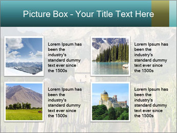 0000080303 PowerPoint Template - Slide 14