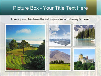 0000080303 PowerPoint Template - Slide 19