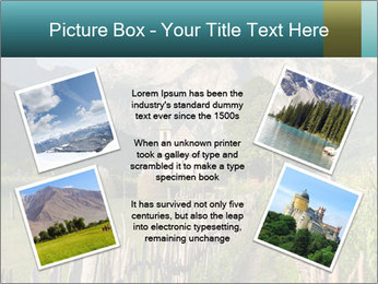 0000080303 PowerPoint Template - Slide 24