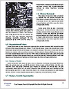0000080305 Word Templates - Page 4
