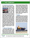0000080306 Word Template - Page 3