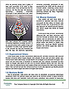 0000080306 Word Template - Page 4