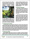 0000080307 Word Templates - Page 4