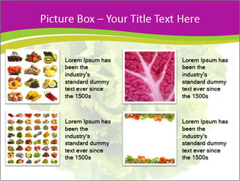 0000080309 PowerPoint Template - Slide 14