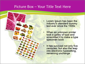 0000080309 PowerPoint Template - Slide 17