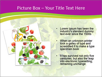 0000080309 PowerPoint Template - Slide 20