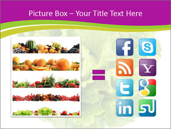 0000080309 PowerPoint Template - Slide 21
