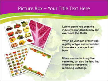 0000080309 PowerPoint Template - Slide 23