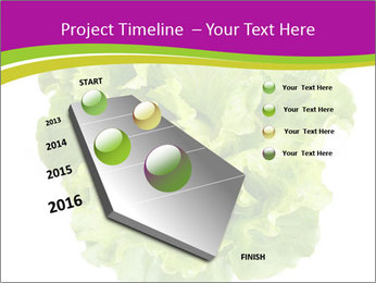 0000080309 PowerPoint Template - Slide 26