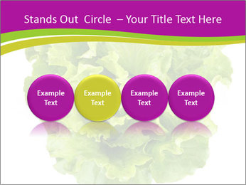 0000080309 PowerPoint Template - Slide 76