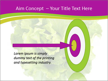 0000080309 PowerPoint Template - Slide 83