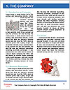 0000080310 Word Template - Page 3