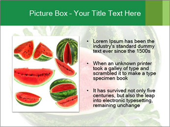 0000080312 PowerPoint Templates - Slide 13