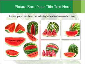 0000080312 PowerPoint Templates - Slide 19