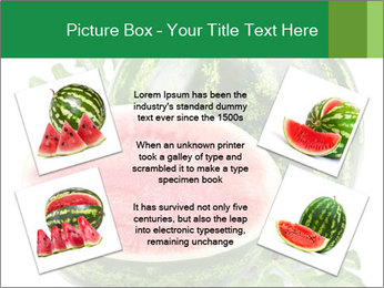 0000080312 PowerPoint Templates - Slide 24