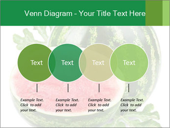 0000080312 PowerPoint Templates - Slide 32