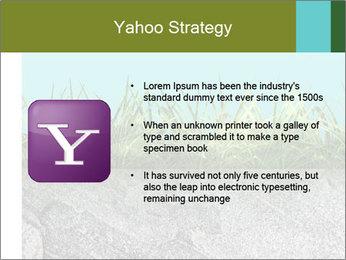 0000080313 PowerPoint Template - Slide 11