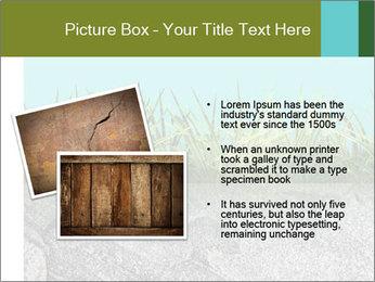 0000080313 PowerPoint Template - Slide 20