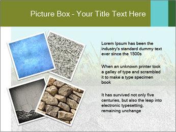 0000080313 PowerPoint Template - Slide 23
