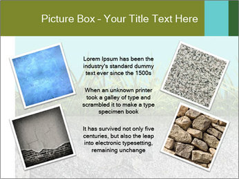 0000080313 PowerPoint Templates - Slide 24