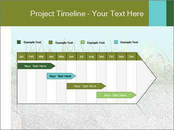 0000080313 PowerPoint Templates - Slide 25