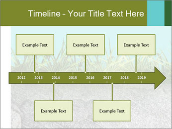 0000080313 PowerPoint Template - Slide 28