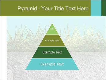 0000080313 PowerPoint Template - Slide 30