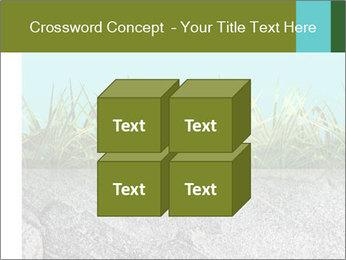 0000080313 PowerPoint Template - Slide 39