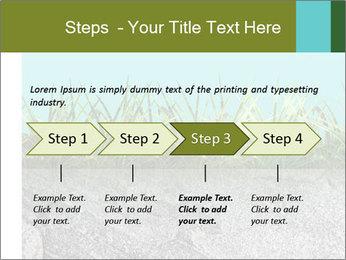 0000080313 PowerPoint Templates - Slide 4