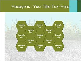 0000080313 PowerPoint Templates - Slide 44