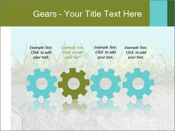 0000080313 PowerPoint Template - Slide 48