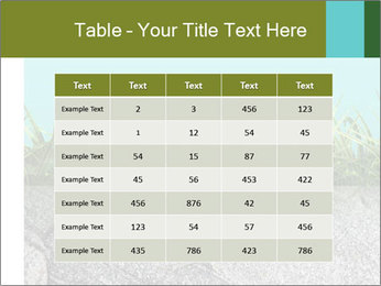 0000080313 PowerPoint Template - Slide 55