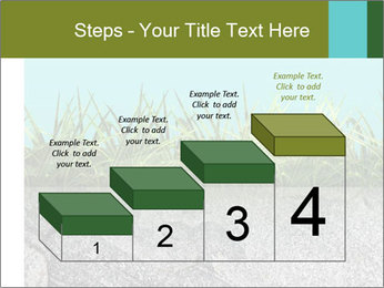 0000080313 PowerPoint Template - Slide 64