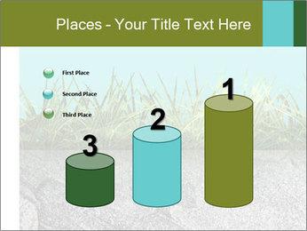 0000080313 PowerPoint Templates - Slide 65