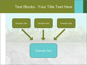 0000080313 PowerPoint Templates - Slide 70