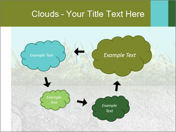 0000080313 PowerPoint Template - Slide 72