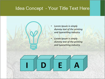 0000080313 PowerPoint Template - Slide 80