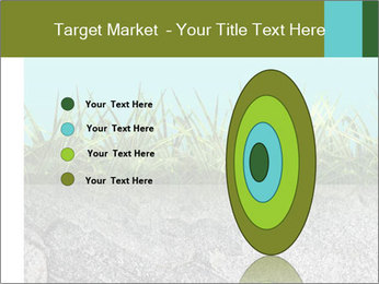 0000080313 PowerPoint Templates - Slide 84