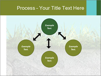 0000080313 PowerPoint Templates - Slide 91