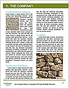 0000080313 Word Template - Page 3
