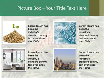 0000080314 PowerPoint Template - Slide 14