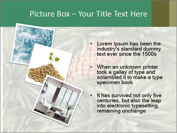 0000080314 PowerPoint Template - Slide 17