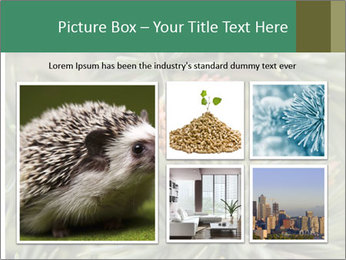 0000080314 PowerPoint Template - Slide 19
