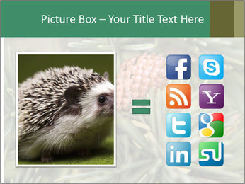 0000080314 PowerPoint Template - Slide 21