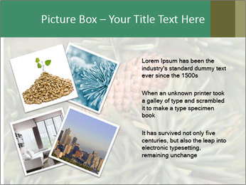 0000080314 PowerPoint Template - Slide 23