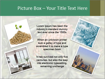 0000080314 PowerPoint Template - Slide 24