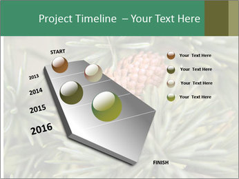 0000080314 PowerPoint Template - Slide 26