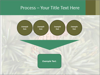 0000080314 PowerPoint Template - Slide 93